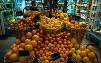 מהי דיאטת פירות?